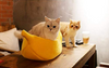 KittyPeel - Pet Banana Hideaway at My Pets Store Pet cat Bed Comfortable Donut Cuddler Round cat Kennel Ultra Soft Washable Dog and Cat Cushion Bed Winter Warm Sofa hot sell Houses, Kennels & Pens amazon cat bed yellow