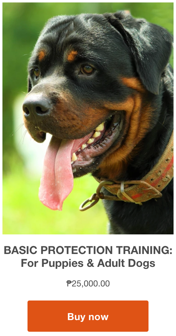 buy basic protection