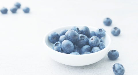 Blueberries Improve Brain Function and Memory