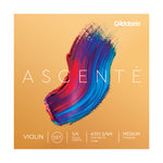 D'Addario Ascente Violin String Set - Medium Tension - New,3/4