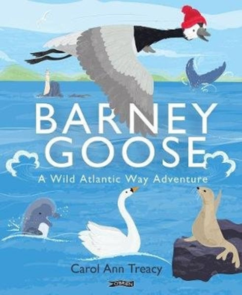 Barney Goose : A Wild Atlantic Way Adventure-9781788491426