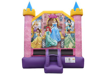 LDP13 | Disney Princess (13)