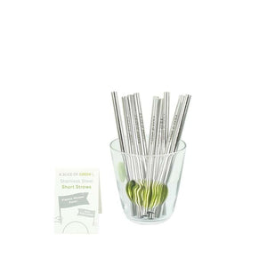 A Slice of Green: Stainless Steel Mini Straw