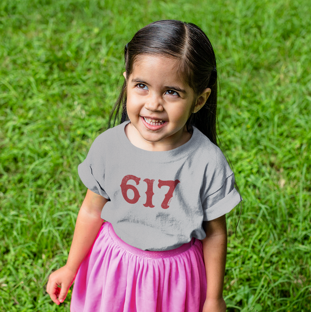 Boston 617 Team Spirit Toddler T-Shirt