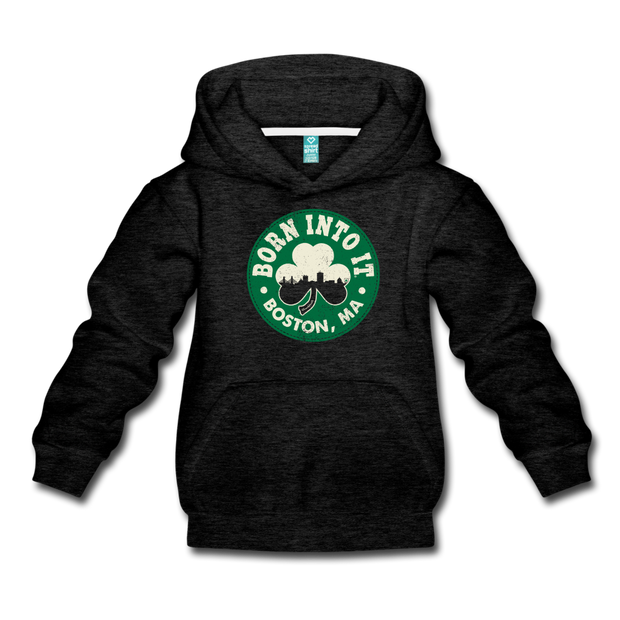 Born Into It Boston Shamrock Youth Sweatshirt - charcoal gray