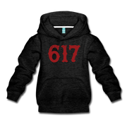 Boston 617 Team Spirit Youth Sweatshirt - charcoal gray