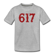 Boston 617 Team Spirit Toddler T-Shirt - heather gray