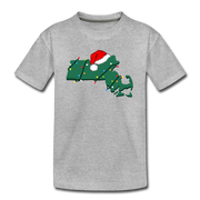 Mass Holiday Youth T-Shirt - heather gray