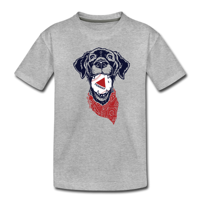 Fenway dog Toddler T-Shirt - heather gray