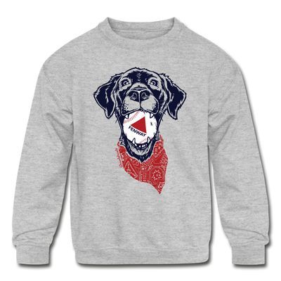 Fenway Dog Youth Sweatshirt - heather gray
