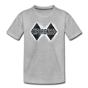 Experienced Toddler T-Shirt - heather gray