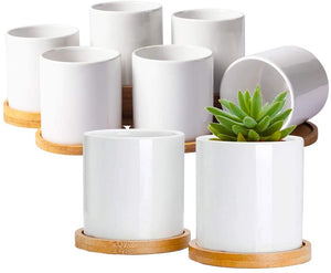 (E658) Succulent Plant Pots, White Mini 3.5 inch Ceramic Flower Planter Pot with Bamboo Tray, Pack of 6 - Plants Not Included (8 Pack)