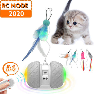 (D466)MalsiPree Remote Control Interactive Cat Toys for Indoor Cats, 2 Speed Robotic Automatic/Manual Mode with Ball Feathers Catnip Mouse/Fish