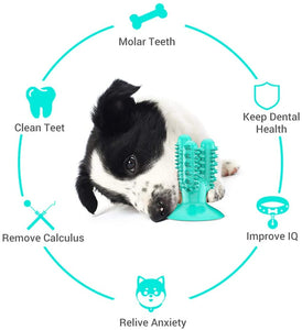 (Y360)AmazeFan Extremely Tough Bite Resistant Natural Rubber Dog Toothbrush Toys Dog Teeth Cleaning Chew Toy for Chewing/Teeth Cleaning (Suitable for All Sized Dogs)
