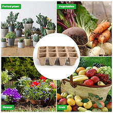 Load image into Gallery viewer, (W499)Daletu Seed Starter Tray, 12 Pack 12 Cell (144 Cells) Peat Pots, Biodegradable Seed Starting Trays, Eco-Friendly Seedling Trays, Organic Seed Starter ...