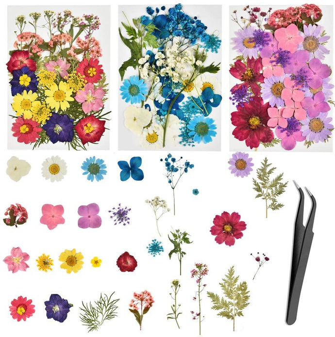 (R565)Dried Flowers, 101 Piece Real Dried Pressed Flowers Leaves for Resin with Tweezers for Scrapbooking Soap and Candle Making Resin Jewelry Pendant Crafts Making