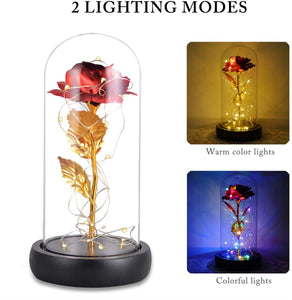(S341)Beauty and The Beast Rose, Valentine Red Silk Rose in Dome Glass with 20 LED Fairy Lights String, Romantic Surprise