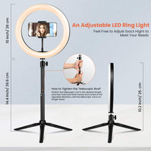 "Load image into Gallery viewer, (Q236)10.2"" Ring Light Elfeland Selfie LED Ring Light with Tripod Stand and Phone Holder for YouTube Video Live Stream Makeup Photography, Shooting"