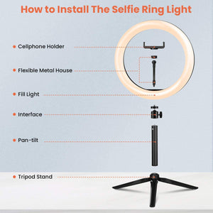 "(Q236)10.2"" Ring Light Elfeland Selfie LED Ring Light with Tripod Stand and Phone Holder for YouTube Video Live Stream Makeup Photography, Shooting"