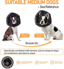 Load image into Gallery viewer, (R800)FOCUSPET Dog Cone Collar for Surgery, Pet Recovery Collar for After Surgery, Dogs & Cats Soft Recovery Collar Protective Collar for Large Dogs Wound Healing