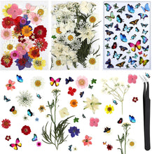 Load image into Gallery viewer, (R568)Dried Flowers, 113 Piece Real Dried Pressed Flowers and Butterfly Transparent Sheet Set for Resin with Tweezers