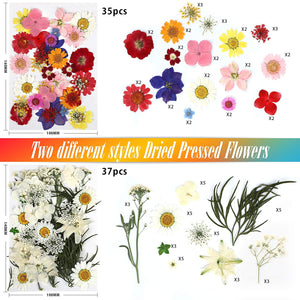 (R568)Dried Flowers, 113 Piece Real Dried Pressed Flowers and Butterfly Transparent Sheet Set for Resin with Tweezers