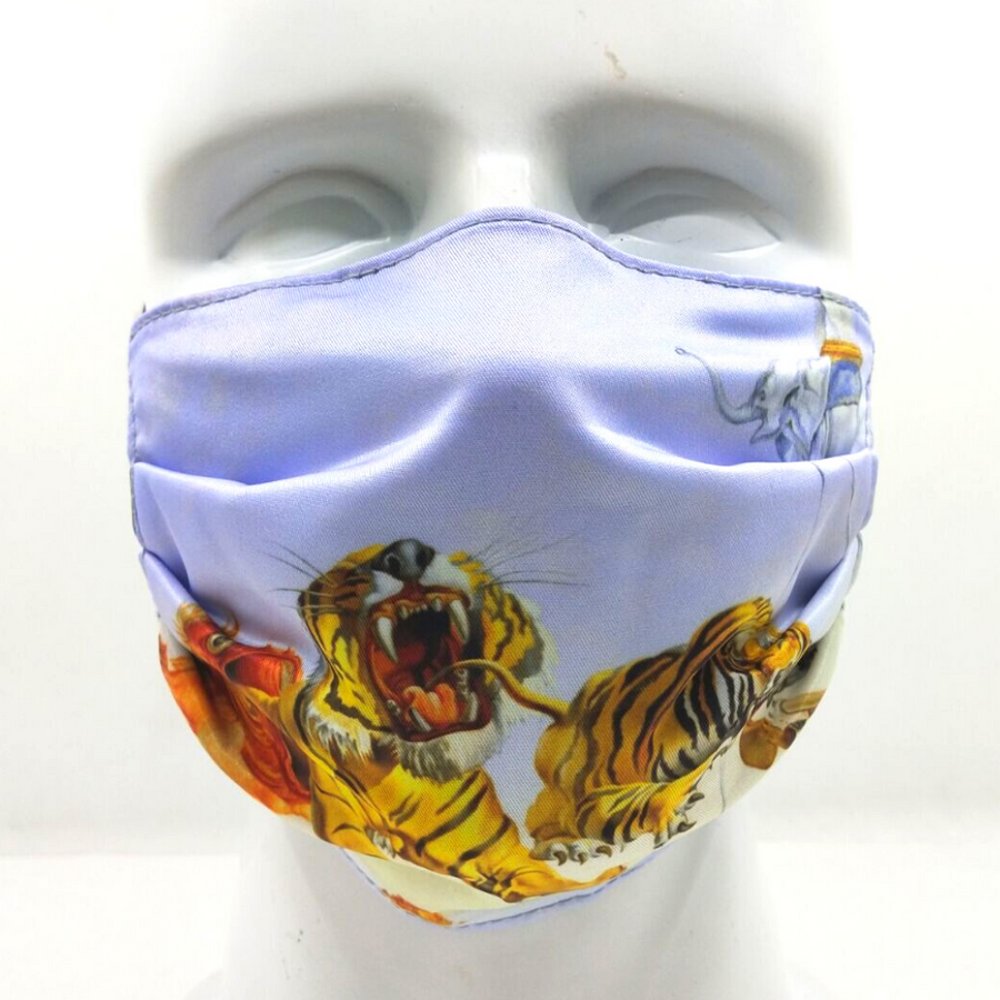 Dali Reversible Mask