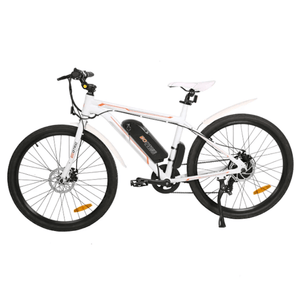 Crankworks Ecotric-Vortex 36V 350W City Electric Bicycle
