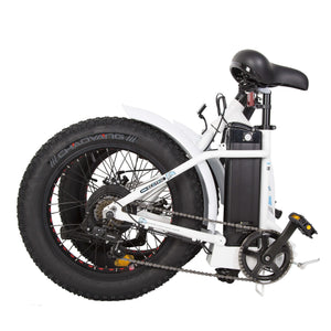 Crankworks Ecotric-Dolphin 36V 500W Fat Tire Portable Folding Electric Bicycle