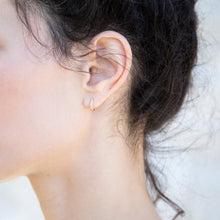 Load image into Gallery viewer, Siri Hansdotter - FERN Mini Hoop Earrings