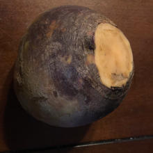 Load image into Gallery viewer, Rutabaga