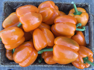 Peppers (Greenhouse)
