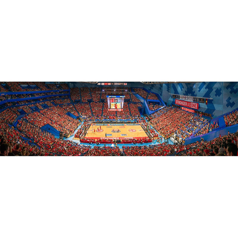 2019 Game Three Arena Panorama Lithograph