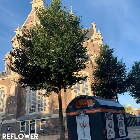 Reflower Outdoor Westertoren