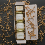 Inside the Gift Box of Concrete Garden The Antidote Collection, Three Soy Wax 4 oz Candles with Black Background