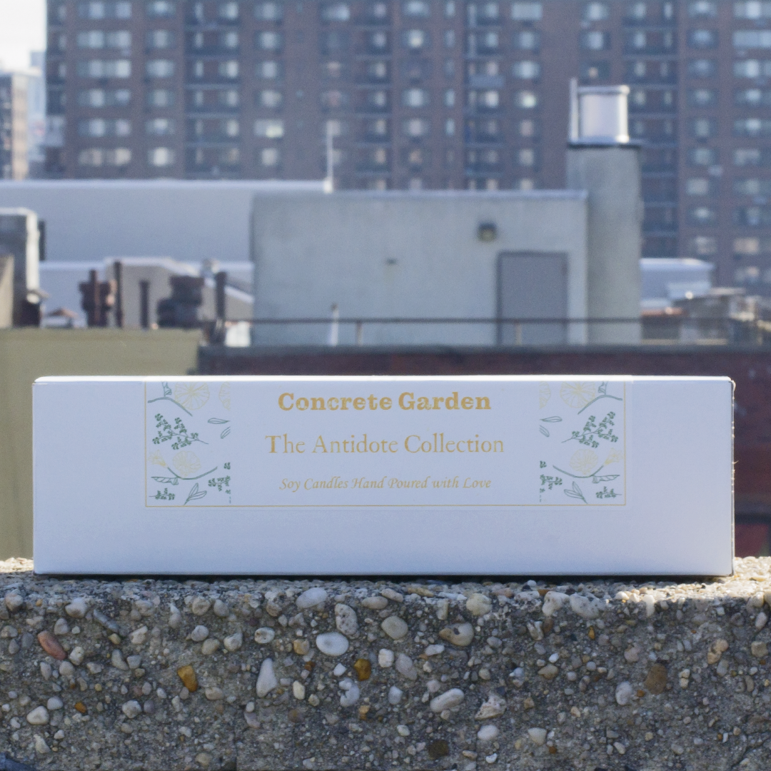 View of Gift Box of Concrete Garden The Antidote Collection, Three Soy Wax 4 oz Candles with NYC Background