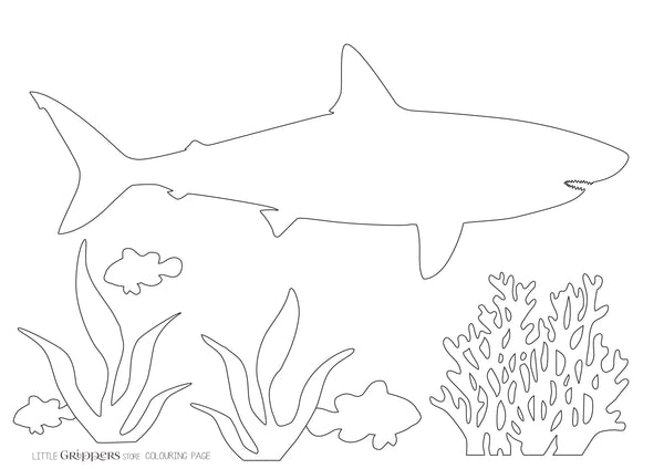 Free Shark Colouring Page
