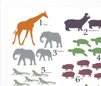 Animal counting poster