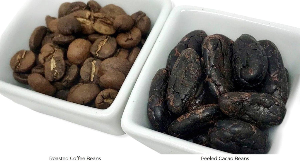 What's the difference between coffee beans and cacao beans?