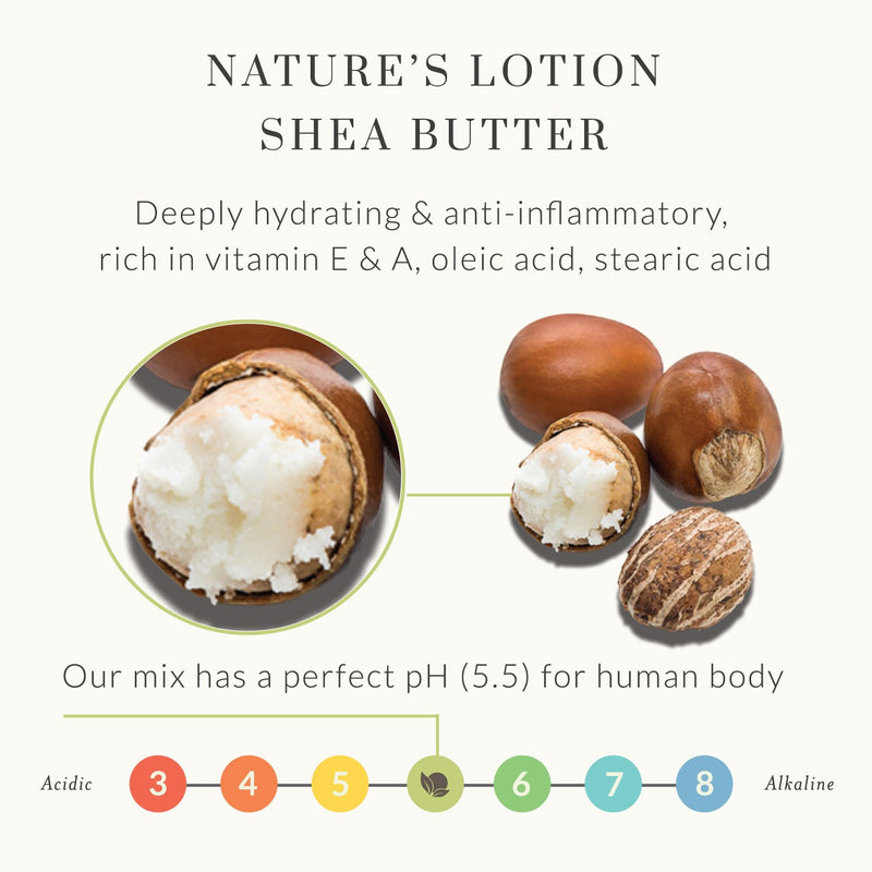 Shea Body Butter - Citrus Shea Butter Body Lotion by Tree to Tub for Sensitive Skin - Shea Butter Cream with Butter Oils, Anti-Aging Vitamin C