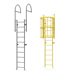 Fixed Access Ladder Inspections