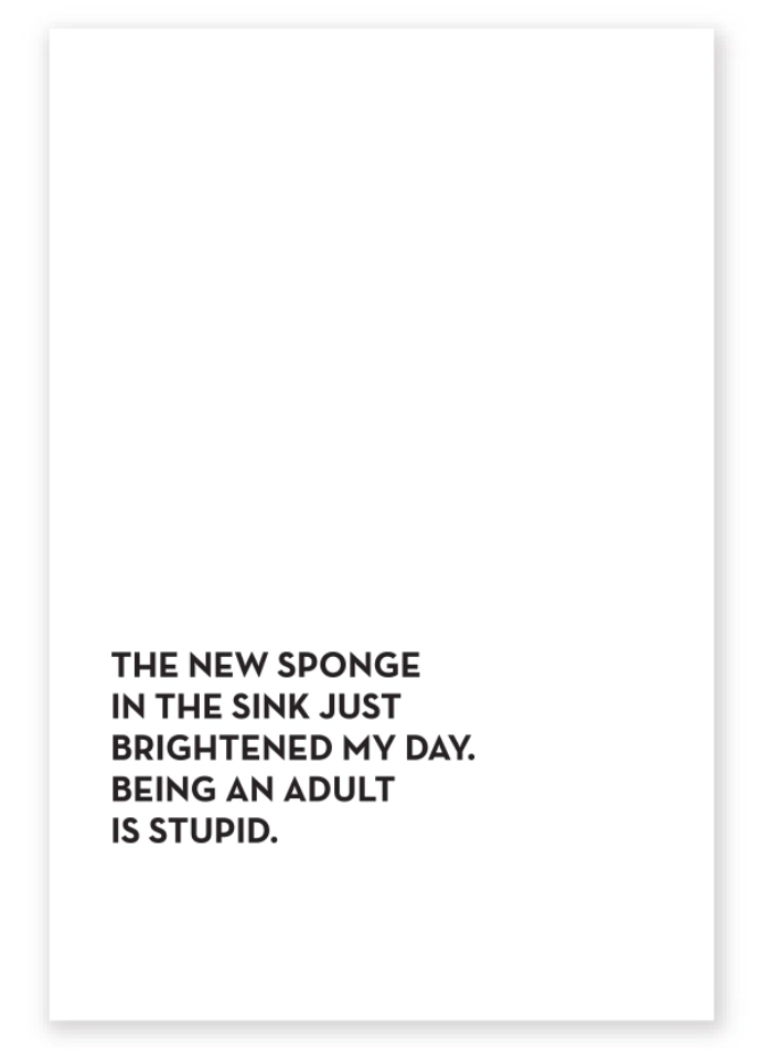 sponge tea towel