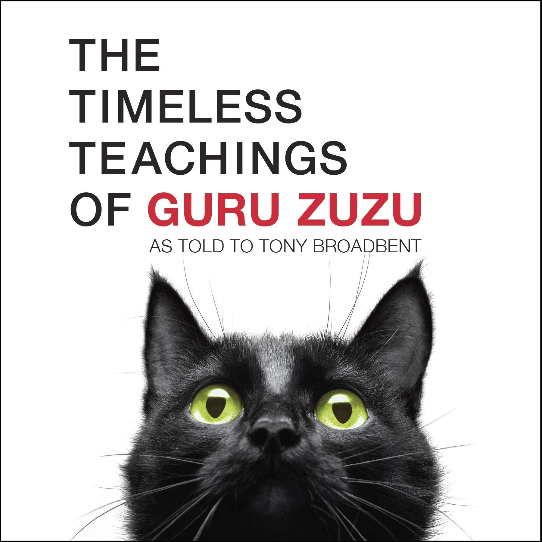 the timeless teachings of guru zuzu book