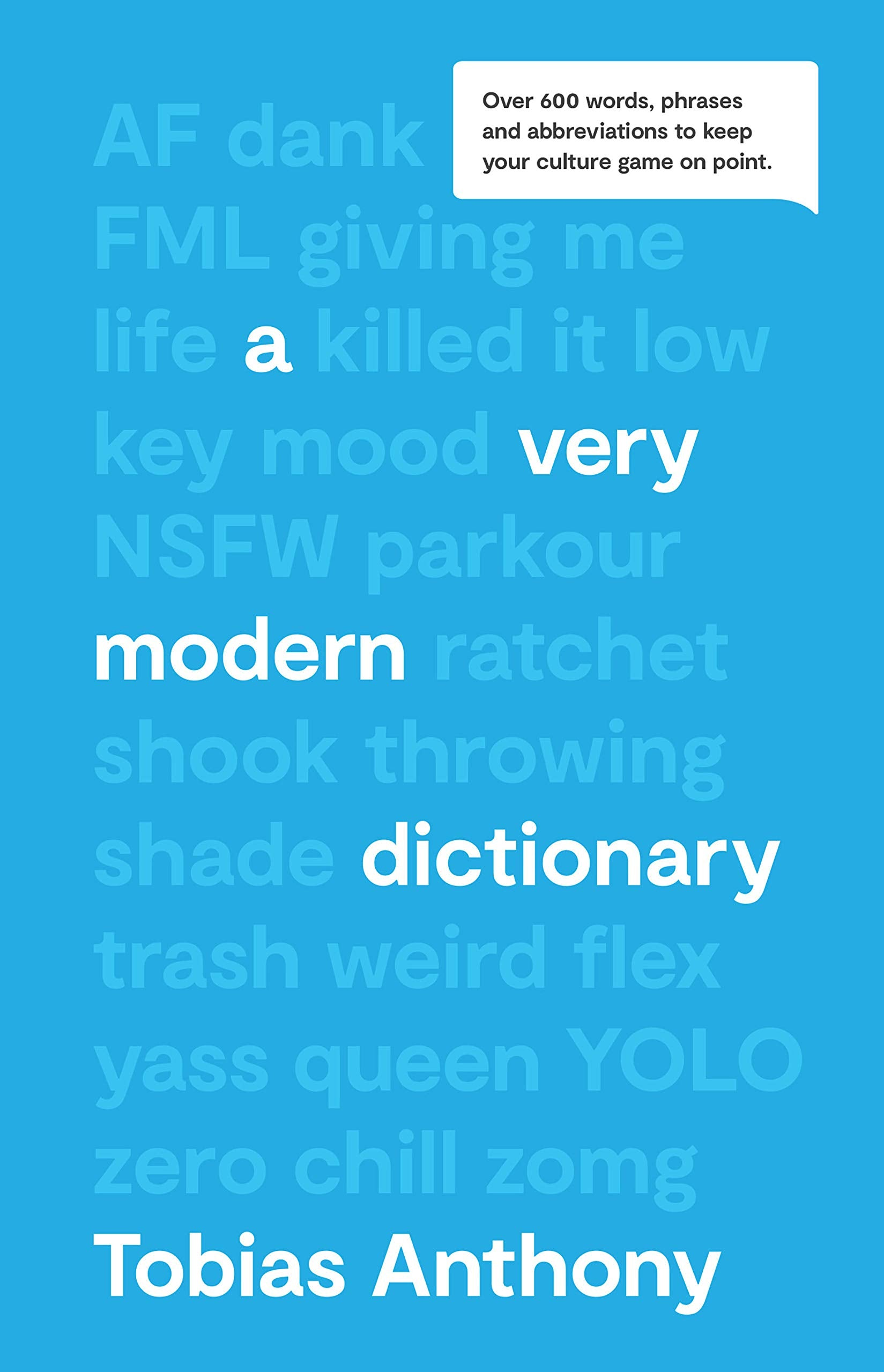 The Very Modern Dictionary Book