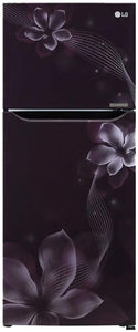 LG 260 L 2 Star Inverter Frost-Free Double-Door Refrigerator (GL-N292DPOY, Purple Orchid)