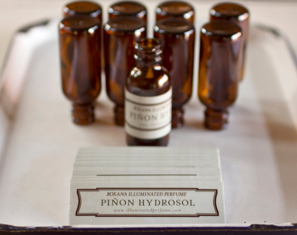 Piñón Hydrosol, 1 ounce in simple amber glass bottle