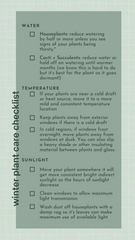 Easy Winter Plant Care Checklist and Tips