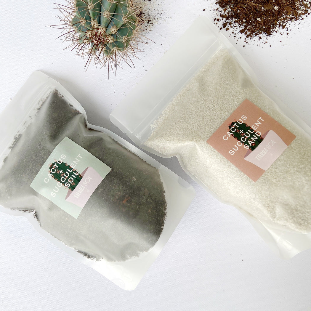 Two bags filled with cactus and succulent sand and soil that helps keep plants healthy