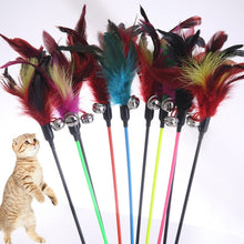 Load image into Gallery viewer, 1PCS Hot Sale Cat Toys Make A Cat Stick Feather With Small Bell Natural Like Birds Random Color Black Coloured Pole