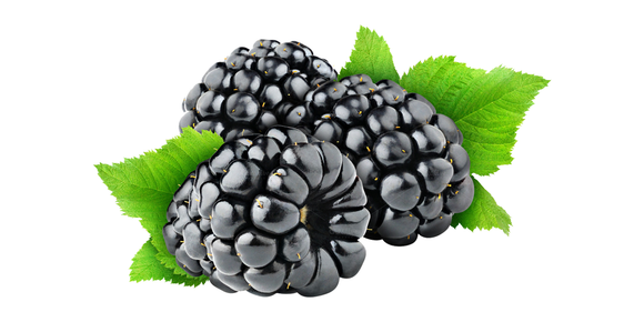 Blackberry Imported 125gm (4803571187797)